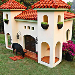 Ever seen a real dog's palace? You have now!